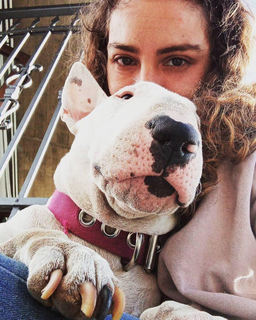 Nicoletta Fabiano con Bull Terrier, bullismo nei cani