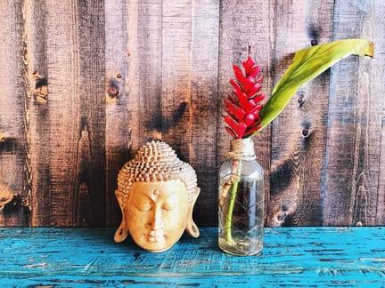 buddha autismo